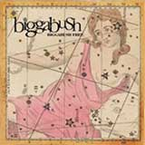 BIGGABUSH / BIGGABUSH FREE