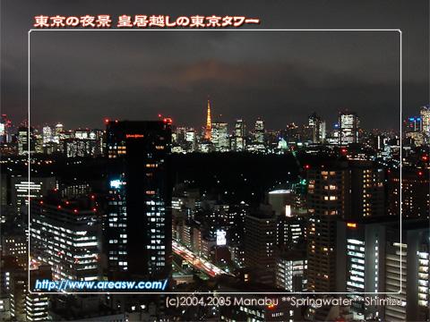 東京の夜景 皇居越しの東京タワー