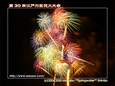 第30回 江戸川区花火大会