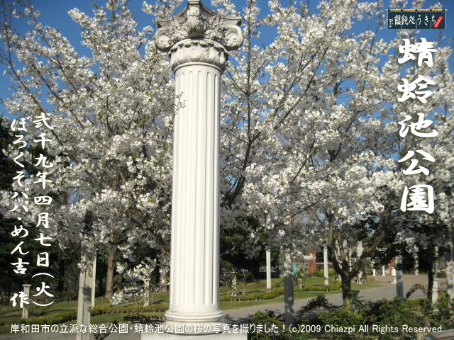 4/7(火)【蜻蛉池公園】岸和田市の立派な総合公園・蜻蛉池公園の桜の写真を撮りました!@キャツピ&めん吉の【ぼろくそパパの独り言】     ▼クリックで元の画像が拡大します。