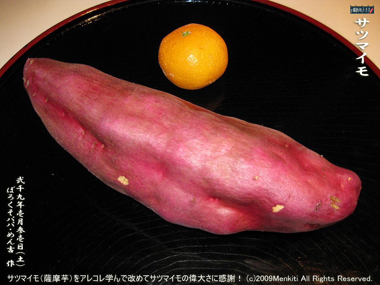 1/31(土)サツマイモの由来と歴史を学んで改めてサツマイモの偉大さに感謝!@キャツピ&めん吉の【ぼろくそパパの独り言】     ▼クリックで1280x960pxlsに拡大します。