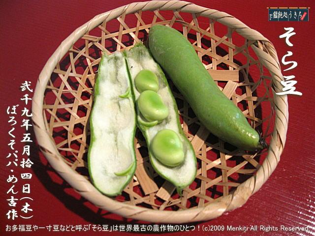 5/14(木)【そら豆】お多福豆や一寸豆などと呼ぶ「そら豆」は世界最古の農作物のひとつ! @キャツピ&めん吉の【ぼろくそパパの独り言】 ▼マウスオーバー(カーソルを画像の上に置く)で別の画像に替わります。     ▼クリックで1280x960画像に拡大します。