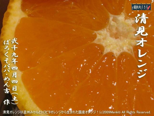 4/4(土)【清見オレンジ】清見オレンジは温州みかんとトロビタオレンジから生まれた国産オレンジ!@キャツピ&めん吉の【ぼろくそパパの独り言】     ▼クリックで元の画像が拡大します。