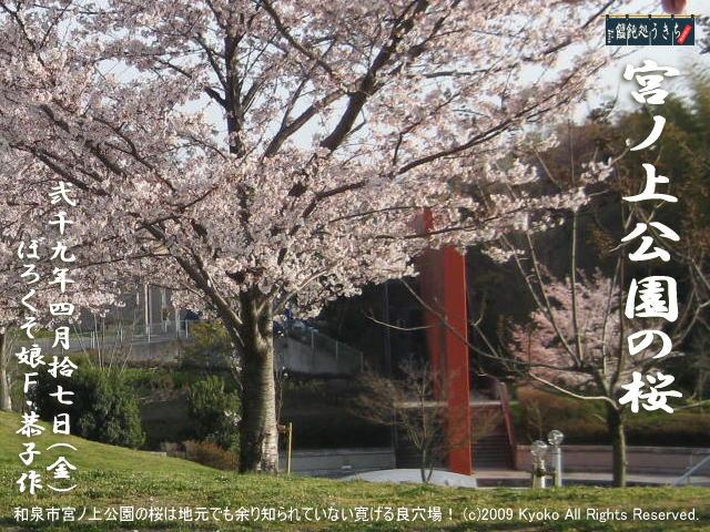 4/17(金)【宮ノ上公園の桜】和泉市宮ノ上公園の桜は地元でも余り知られていない寛げる良穴場!@キャツピ&めん吉の【ぼろくそパパの独り言】    ▼クリックで1280x960pxlsに拡大します。