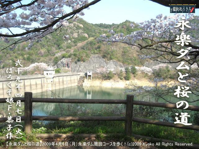 4/8(水)【永楽ダムと桜の道】2009年4月6日(月)F・恭子、永楽ダム周回コースを歩く! @キャツピ&めん吉の【ぼろくそパパの独り言】      ▼クリックで元の画像が拡大します。