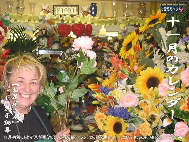 【11月カレンダー画像】イタリア・フィレンツェの11月のお花屋さんと日本の11月の菊 (c)KyokoF@映画の森てんこ森 2009 All Rights Reserved.
