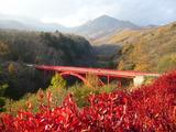 川俣渓谷�