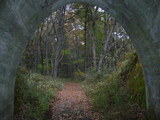 廃屋のトンネル�