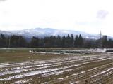 積雪その2