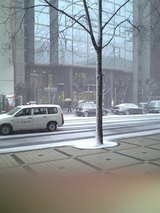 ホテル前雪