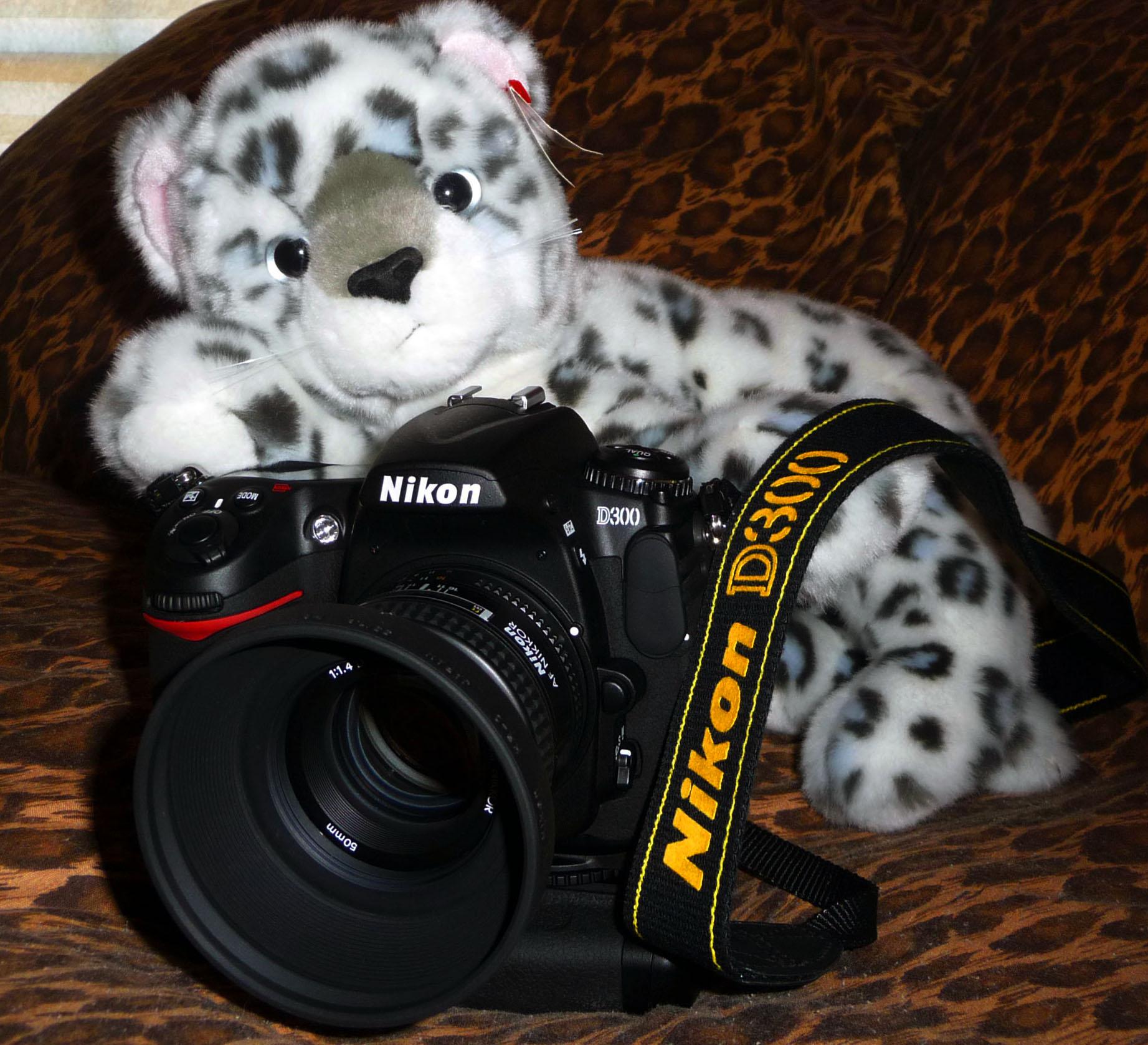 Nikon D300 + AF-S Micro NIKKOR 60mm F2.8G ED