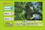 NHK-E yama6