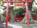 090423kamakurasannsaku1-01