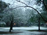park/snow