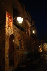 ディズニー夜景3