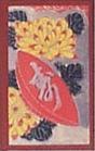 大石明治菊