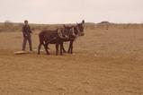 20070620A2畑を耕す農民
