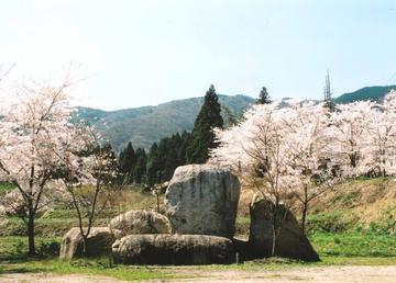 http://image.blog.livedoor.jp/gabigreve2000/imgs/1/6/162f0514.jpg
