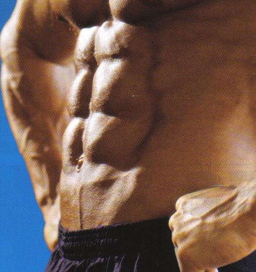 腹筋の画像 p1_8