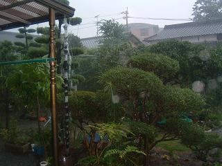 激しい雨1