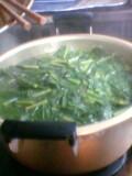 小松菜を投入
