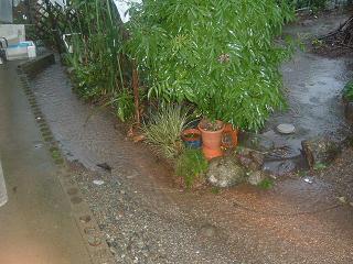 庭にできる川2