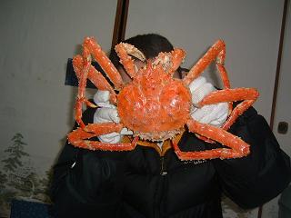 旨そうな蟹!