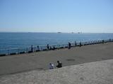 高洲海浜公園3