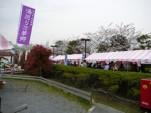 桜まつり2007