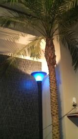 ヤシの木 ライト
