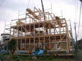 (信州唐松の構造材)建て方の様子