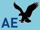AMERICAN EAGLE 通販
