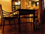 Sandia CAFE_02