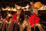 Christmas reindeers