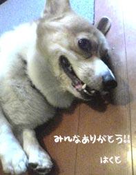みんなありがとう(*^▽^*)