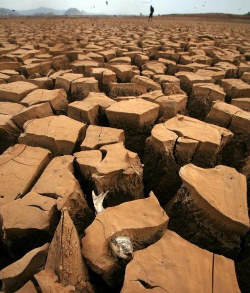 中国の大干ばつ