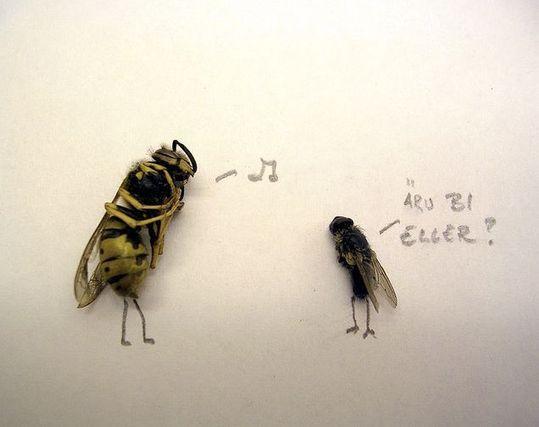 dead_flies_09