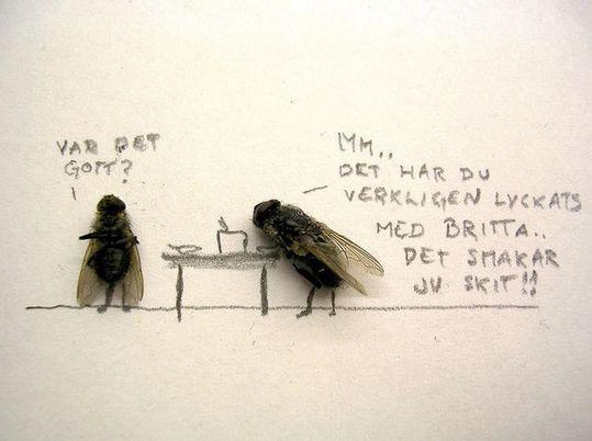 dead_flies_08