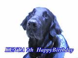 2004誕生日