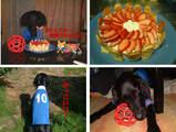 2002誕生日