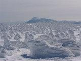 樹氷&岩手山