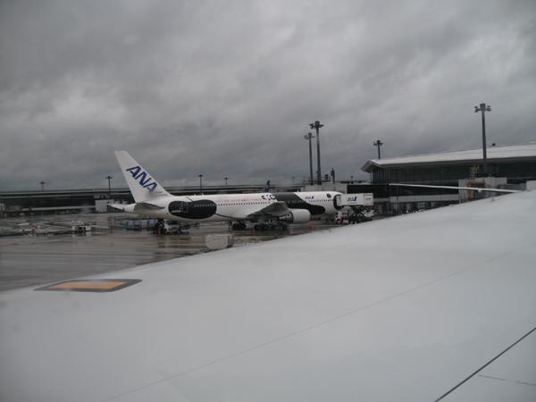 上海からの帰国上海「浦東国際空港」