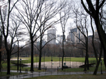 N.Y.のセントラル・パーク(Central park)