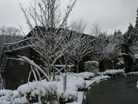 二岐温泉の秘湯、ブナ山荘(ぶなさんそう)の雪景色