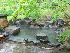 林の中の混浴露天風呂