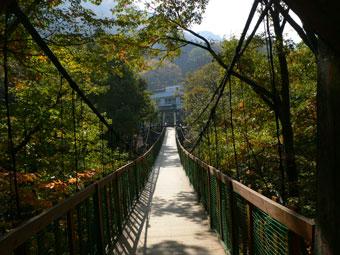 信夫温泉にかかる吊り橋からの紅葉は圧巻