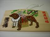 温泉寺の干支絵馬