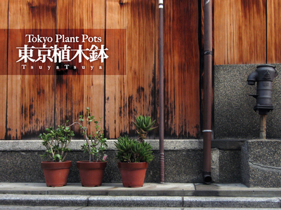 Tokyo Plant Pots 東京植木鉢 TsuyaTsuya on Flickr