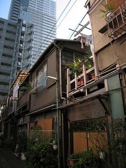Tokyo Plant Pots (Tsukishima010)東京植木鉢