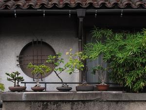 Tokyo Plant Pots (YaNeSen002) 東京植木鉢